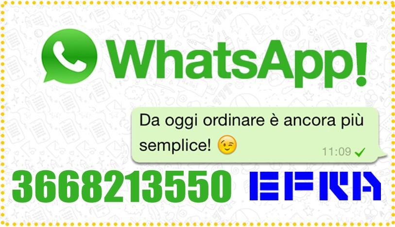 Scrivici con WhatsApp!